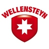 Магазин «Wellensteyn» г.Владимир